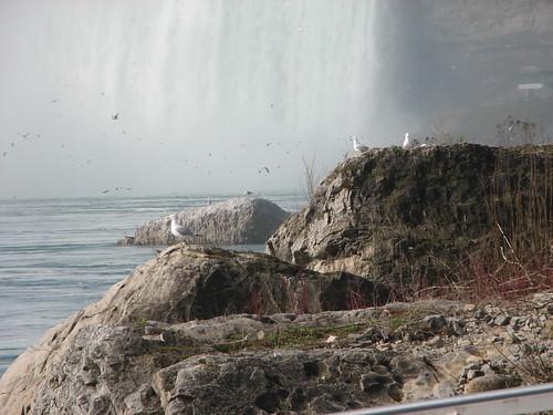 Niagara Falls 015 (30-Apr)