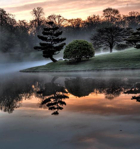 Foggy Dawn Alt 1