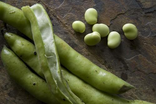 Magic beans.
