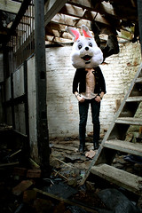 Rabbit in a barn (Brian Tomlinson) Tags: rabbit giant big head human creativecommons
