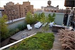 a rooftop garden in NYC, by Diana Balmori (credit: Balmori Associates)