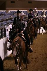 So Pretty on the Rail (aqhjournal) Tags: show freestyle pattern rail trail riding western trick pivot cowboyhat fortworth horsemanship reining aqha texasclassic
