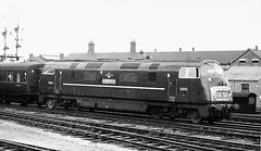 "D843 ""Sharpshooter"" at Swindon, 1st August 1962 (rugd1022) Tags: br diesel north swindon class british locomotive sharpshooter warship wr 43 1963 hydraulic nbl d843 d8xx"