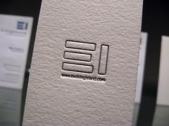 Evolving Island Lettperss Cards - Back