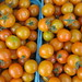 Sunburst Tomatoes