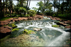 Atlantis: Stream (adr!@n) Tags: longexposure vacation atlantis bahamas polarized paradiseisland neutraldensity canonef24105mmf4lisusm singhray canoneos5dmarkii varinduo