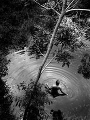 Into the lake (Carlos Ebert) Tags: lake man tree water blackwhite circles brasilia concentric theunforgettablepictures