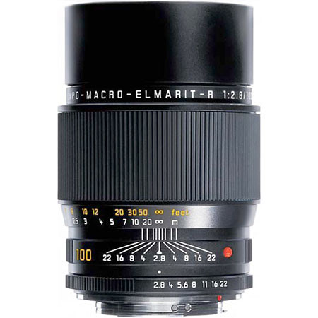 Leica APO-Macro-Elmarit-R 100mm f/2.8
