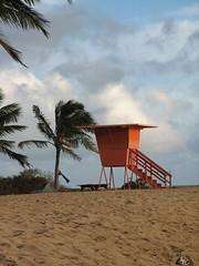 Hawaii 2009 045