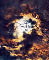 Disturbance. Sonata (Ekler) Tags: light sky music cloud moon tree art classic nature silhouette night dark photo poem mood branch moody shine darkness expression dream picture pic beethoven boo explore illusion moonlight classical sonata artisitic evolt tothemoon ekler giacomoleopardi ofthesun olympuse410 soloha thiswasactuallyarefelction thenitsaprettyscarymaleface inthepaddle ifyoufindaneyetotheleftofthemoon andthehataboveit