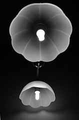 UFOs (arminMarten) Tags: blackandwhite bw lamp canon lampe blackwhite dslr household householditems handhold householdgoods haushalt hausrat schwarzweis hngelampe 400d canon400d  schwarzweisfotografie schwarzweisfoto armanh  schwarzweisbild schwarzweisaufnahme schwarzweisphotographie
