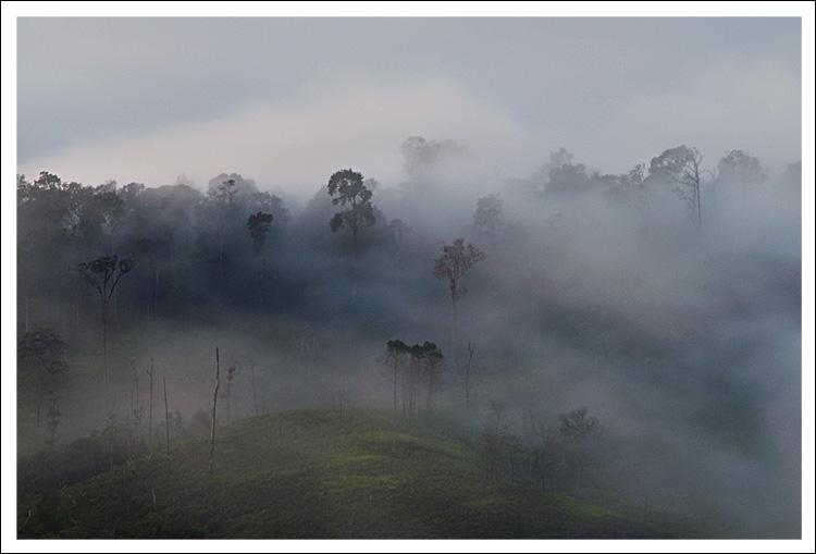 Traveling Mist