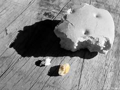 a_miguita  /  Separada del mundo_pan (Felipe Smides) Tags: chile light macro art texture textura luz shadows arte sleep sueos once pan dormir sombras bien felipe texturas hadas sentir t amiguita sinceridad existir soar inspiracin artisticexpression tecito instantfave fluir mywinners aplusphoto imsomnio miguitas beatifulcapture lahoradelt artlegacy smides fotografiasmides funfanphotos felipesmides