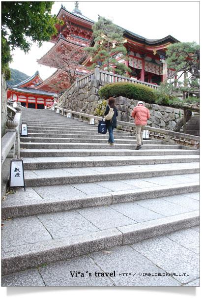 【京都春櫻旅】京都旅遊景點必訪~京都清水寺之美京都清水寺8