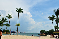 DSC_9682 (Slow's Image) Tags: nikon singapore d300 2470