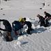 SNOWfest 2009 avalanche training