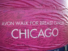 Avon Walk Chicago 2009