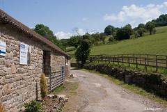 Horse Rehabilitation Centre