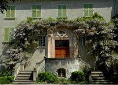 Seminario vescovile di Tirolo (anto_gal) Tags: door tirol porta scala bolzano altoadige merano portone tirolo seminario meran glicine 2011 sudtirol