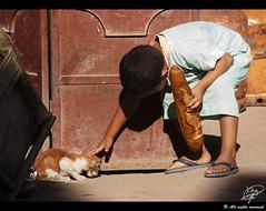 The messenger (Moments by Xag) Tags: street boy bread calle kitten candid morocco messenger pan marruecos niño gatito robado marraketch xag ltytr2 ltytr1 ltytr3 recadero a3b 20tfrobado cruzadasi