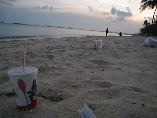 Beach detritus I