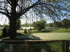 backyard-golfcourse 013