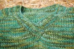 DMR Forest Sweater (ripko97) Tags: sweater dmr briarrose