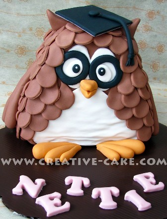 Wise Owl Cake