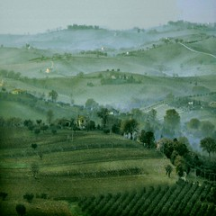 Rural Hills (Osvaldo_Zoom) Tags: morning italy fog rural landscape bravo hills agriculture marche macerata explore1 familyfarming agriscape multipurposeagriculture