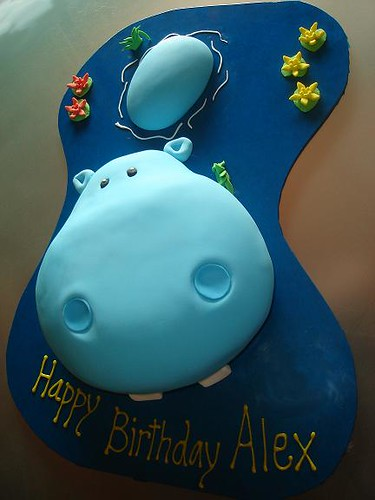 Fine Hippo Birthday Cake A Photo On Flickriver Personalised Birthday Cards Akebfashionlily Jamesorg