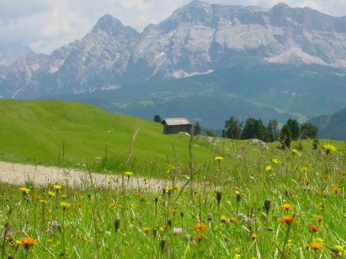 Sehenswerte Alwiesen in den Dolomiten - das Villnösstal