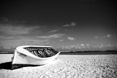 On a solitary beach....