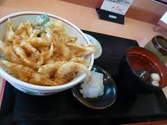 白えび天丼