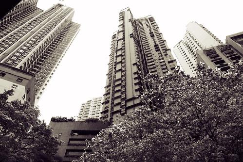 Hong Kong Island 05