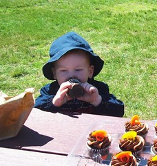 Cupcakes are Yummy