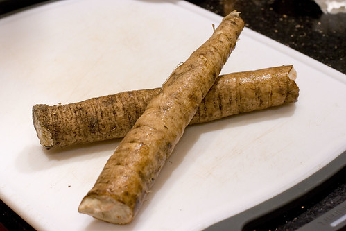 Broken Burdock Root