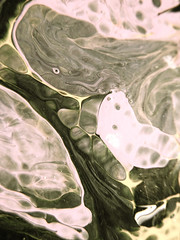 Paintography 6 (Sarabbit) Tags: abstract art painting photography cellular cc faded creativecommons ethereal klockarsclauser