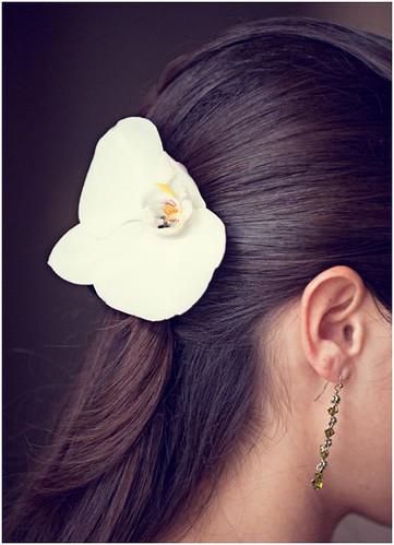 fiore capelli