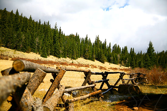 national forest fence