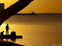 La pesca del Dorado (Gonzak) Tags: sunset rio uruguay atardecer olympus pesca 2009 gettyimages dorado fraybentos e500 riouruguay theunforgettablepictures proudshopper gonzak useta