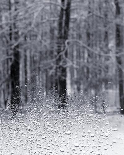 v snow 016 bw