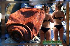sexy graffiti (elrincon101) Tags: ocean girls sexy beach surf grafitti wave surfing muse sexylegs musas surfinggirls