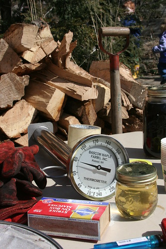 sap and wood and a thermometer