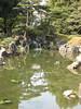 二条城 Nijo Castle Garden
