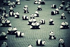 1600 @ piazza del popolo (bryenh) Tags: rome roma animals nikon panda 1600 animali wwf piazzadelpopolo cartapesta d40 nikond40 18042009