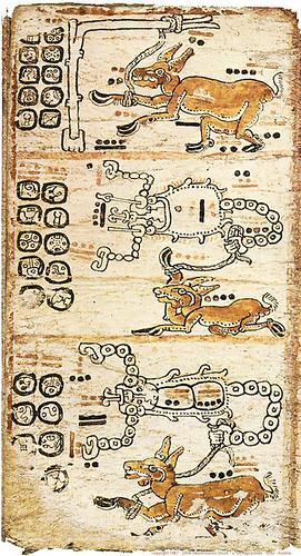 014-Códice Tro-Cortesianus o Códice Marid-page044