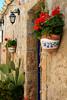 Colori (sabrinac78) Tags: verde primavera canon europa europe ficodindia italia estate case sicily fiori piante pietra colori antico borgo vaso marzamemi sicilia siracusa pala tufo pescatori geraneo recupero sicilianità casedipescatori