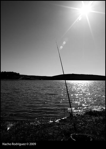 Mañana de pesca