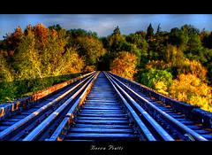 vias (DiEgo bErrA) Tags: trees train tren cordoba hdr removedfromstrobistpool nooffcameraflash seerule1