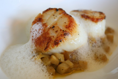 Grilled king scallop with mushroom ragout